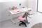 Комплект парта и кресло KidsMaster UR-6 Wunderkind 120см - фото 7057