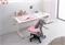 Комплект парта и стул KidsMaster UR-6 Wunderkind 120см - фото 7083